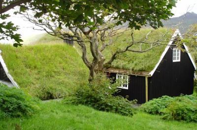 Toiture v g talis e quelle solution pour sa maison for Maison avec toit vegetal