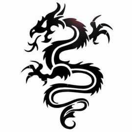 les plus beau dragons du monde. Black Bedroom Furniture Sets. Home Design Ideas